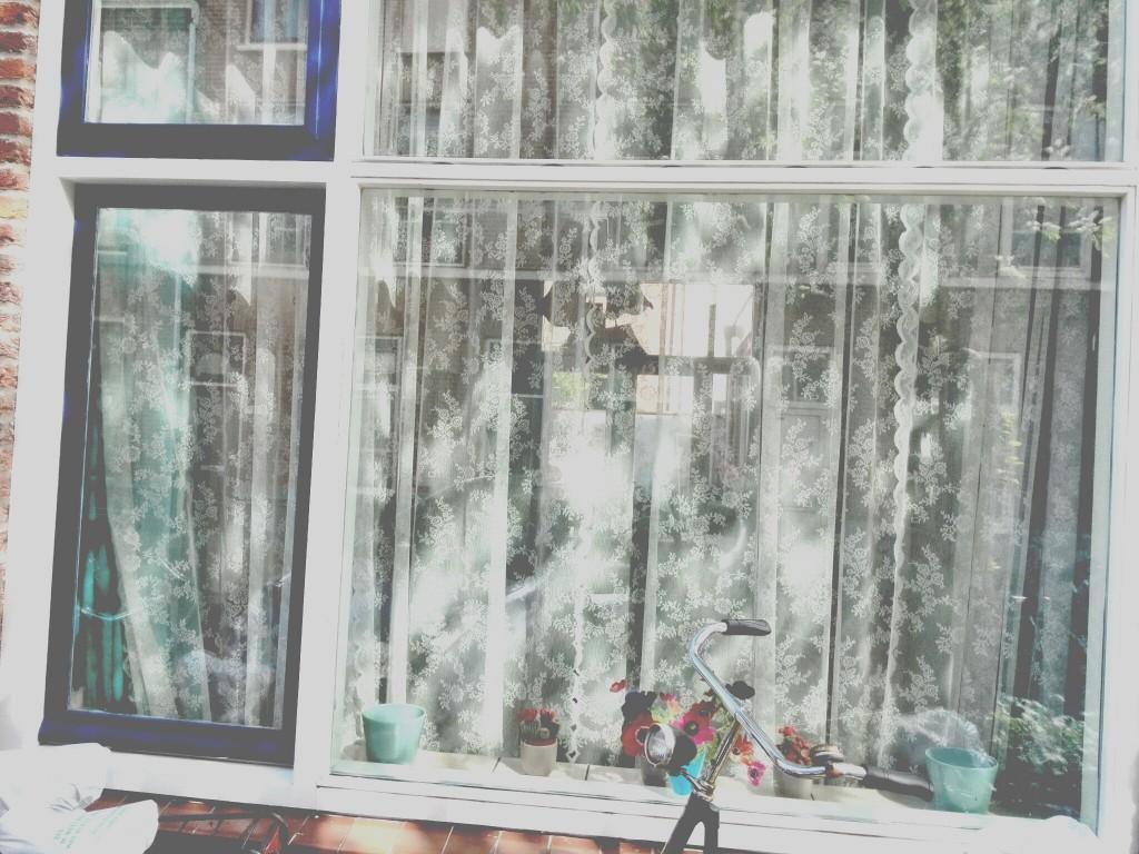 Zie die ramen shinen
